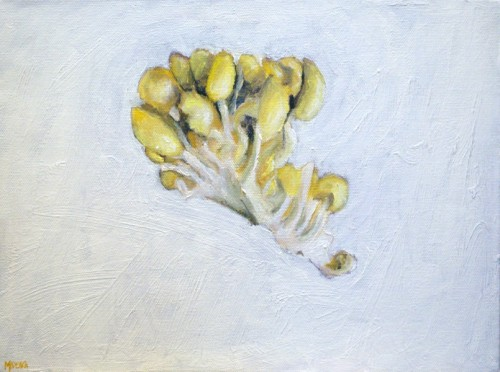 Golden Oyster Mushrooms painting